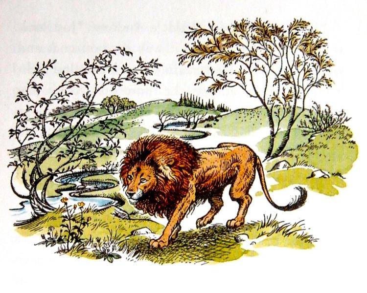 aslan.JPG